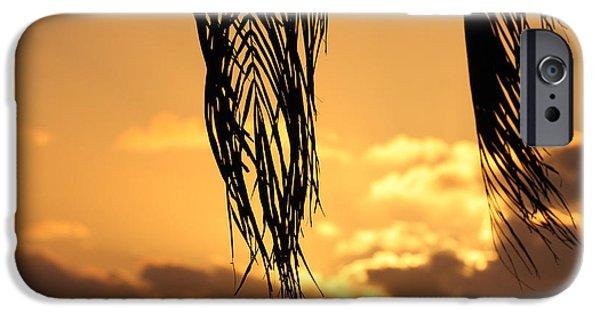 Islamorada iPhone Cases - Islamorada Sunset iPhone Case by Ty Helbach