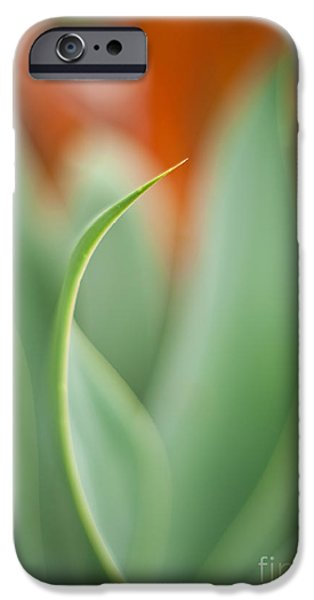 Big Island iPhone Cases - Island Curve iPhone Case by Mike Reid