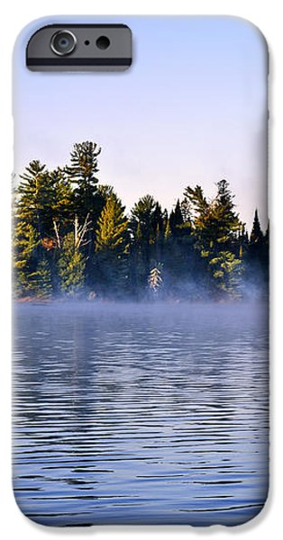 Island in lake with morning fog iPhone Case by Elena Elisseeva