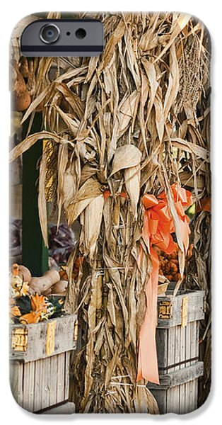 Isoms Orchard in Fall Regalia iPhone Case by Kathy Clark