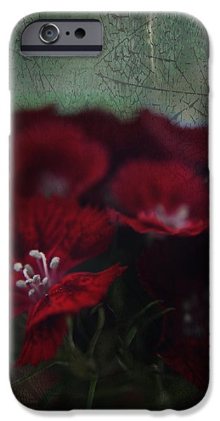 Stamen iPhone Cases - Its a Heartache iPhone Case by Laurie Search