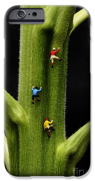 Childrens Books iPhone Cases - Jack And His Friends Climb The Beanstalk iPhone Case by Bob Christopher