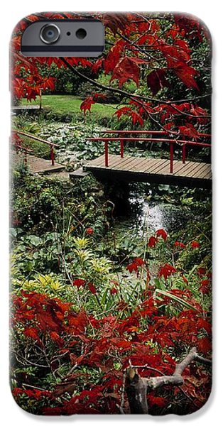 Japanese Garden, Through Acer In iPhone Case by The Irish Image Collection