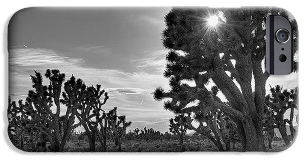 National Preserves iPhone Cases - Joshua Tree National Preserve iPhone Case by Eddie Yerkish