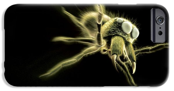 Jumping Spiders iPhone Cases - Jumping Spider, Computer Artwork iPhone Case by Ian Cuming