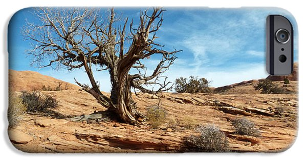 Slickrock iPhone Cases - Juniper on Slickrock iPhone Case by Bob and Nancy Kendrick