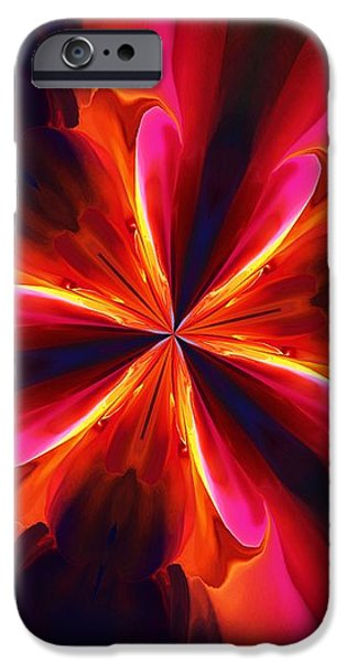Kaliedoscope Flower 121011 iPhone Case by David Lane