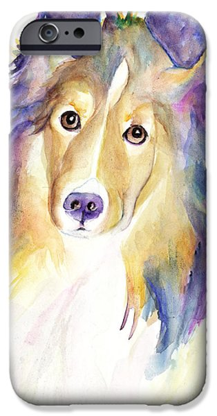 Sheltie iPhone Cases - Kelly iPhone Case by Pat Saunders-White
