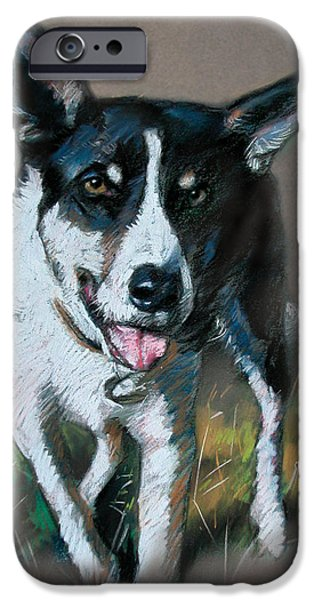 Dogs iPhone Cases - King iPhone Case by Ylli Haruni