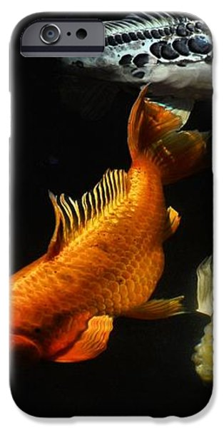 Koi by the Lillies iPhone Case by Don Mann