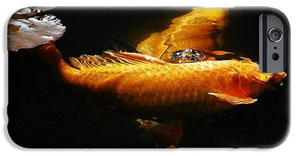 Butterfly Koi Photographs iPhone Cases - Koi Crossing iPhone Case by Don Mann