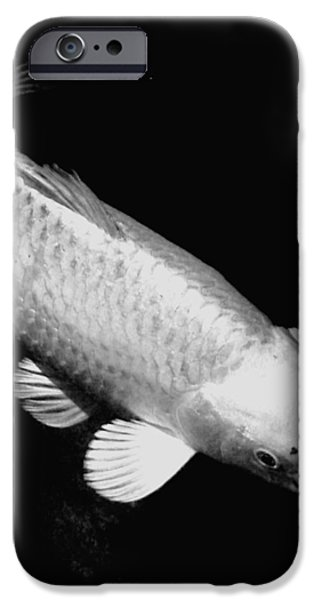 Butterfly Koi Photographs iPhone Cases - Koi in Monochrome iPhone Case by Don Mann