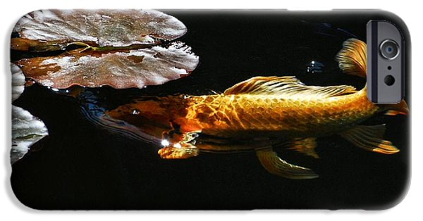 Butterfly Koi Photographs iPhone Cases - Koi under Lillies iPhone Case by Don Mann