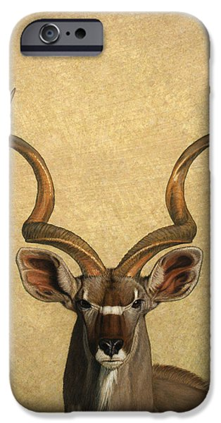 Ears iPhone Cases - Kudu iPhone Case by James W Johnson
