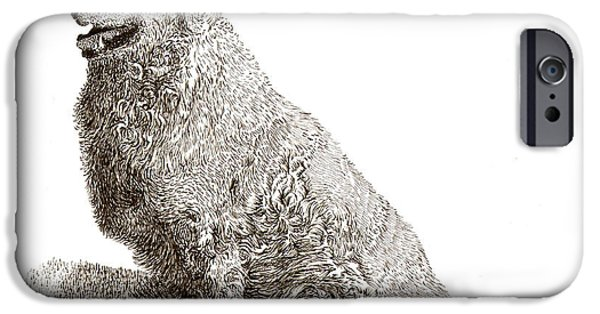Working Breed iPhone Cases - Kuvasz named Pax iPhone Case by Jack Pumphrey