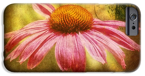 Abstracted Coneflowers iPhone Cases - La fleur iPhone Case by Angela Doelling AD DESIGN Photo and PhotoArt