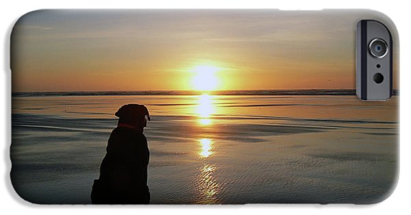 Black Dog iPhone Cases - Labrador Watching the Sun Set iPhone Case by Pamela Patch