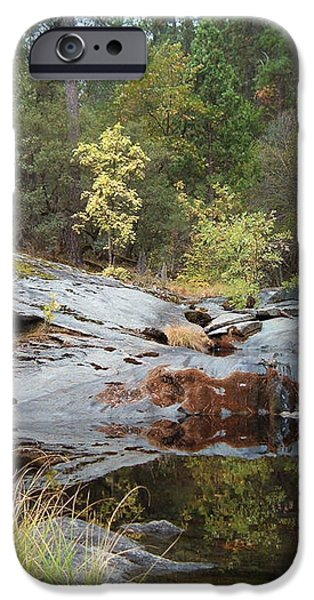 Lake in the Forest 1 iPhone Case by Naxart Studio