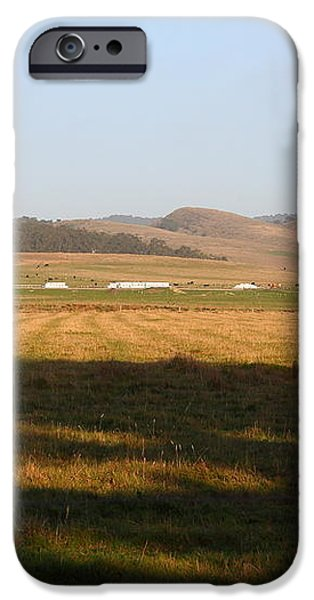 Landscape With Cows Grazing In The Field . 7D9966 iPhone Case by Wingsdomain Art and Photography
