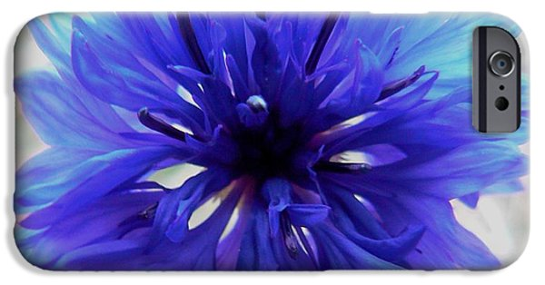 By Barbara St Jean iPhone Cases - Lapis Lazuli iPhone Case by Barbara St Jean