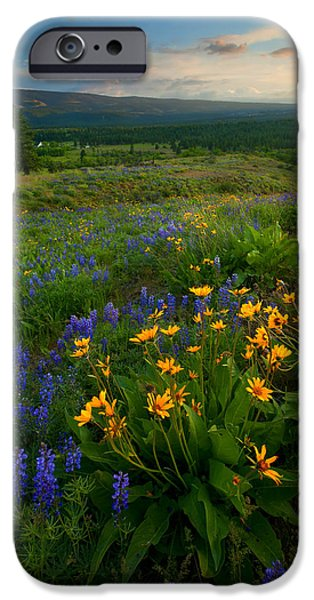 Meadow Photographs iPhone Cases - Last Light over the Wenas iPhone Case by Mike  Dawson