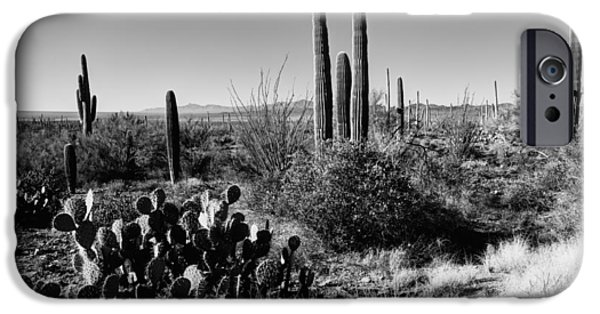 Monochrome iPhone Cases - Late Winter Desert iPhone Case by Chad Dutson