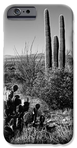 Late Winter Desert iPhone Case by Chad Dutson
