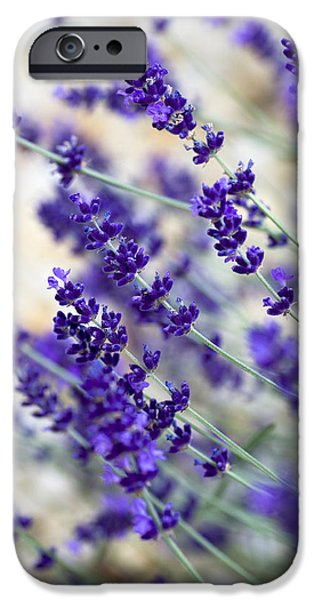 Deep Blue iPhone Cases - Lavender Blue iPhone Case by Frank Tschakert