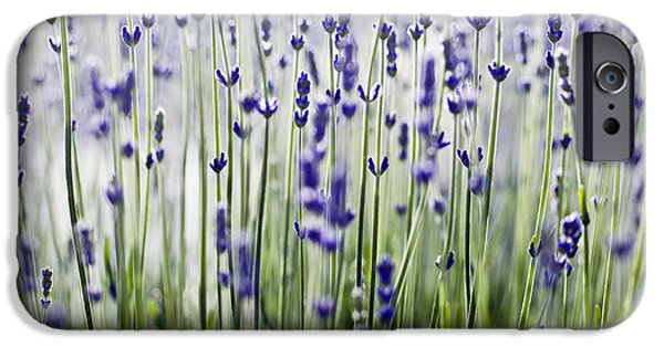 Abstracts From Nature iPhone Cases - Lavender Patterns iPhone Case by Ray Laskowitz - Printscapes