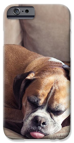 Lazy Boxers iPhone Case by Stephanie McDowell