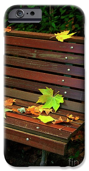 Leafs in Bench iPhone Case by Carlos Caetano