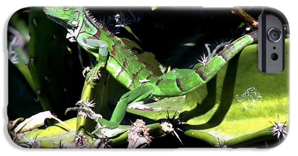 The Nature Center iPhone Cases - Leapin Lizards iPhone Case by Karen Wiles