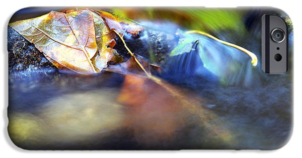 Fallen Leaf On Water iPhone Cases - Leaves on Rock in Stream iPhone Case by Sharon  Talson
