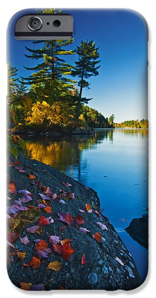 Killarney Provincial Park iPhone Cases - Leaves On Rock, Killarney Provincial iPhone Case by Mike Grandmailson