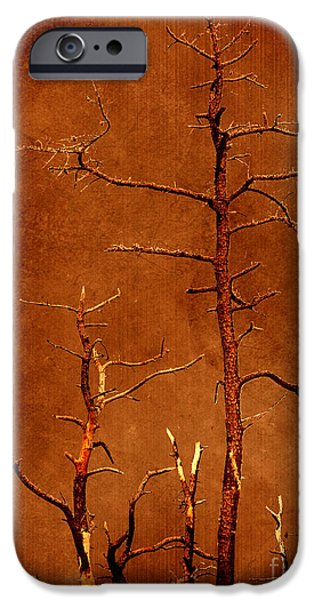 Dipasquale iPhone Cases - Left Bare and Broken iPhone Case by Dana DiPasquale