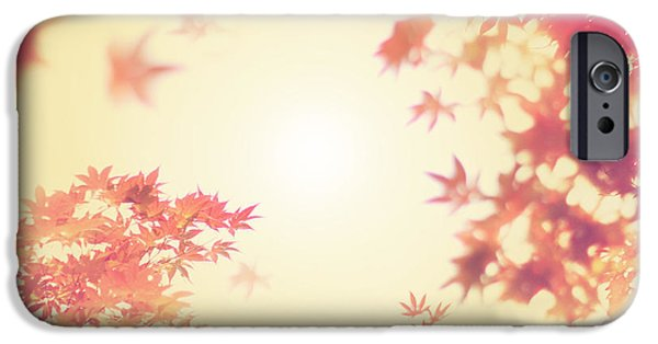 Autumn iPhone Cases - Let It Fall iPhone Case by Amy Tyler