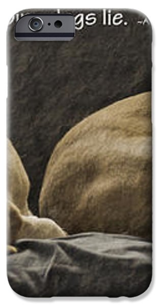 Let sleeping dogs lie iPhone Case by Gwyn Newcombe