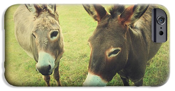 Donkey Digital Art iPhone Cases - Lets Chat iPhone Case by Laurie Search