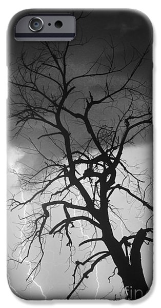 Striking Photography iPhone Cases - Lightning Tree Silhouette Portrait BW iPhone Case by James BO  Insogna
