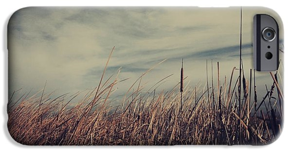 Cattails iPhone Cases - Like the Way You Used to Run Your Fingers Through My Hair iPhone Case by Laurie Search