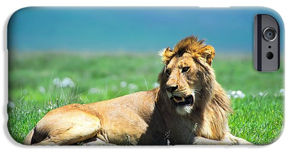 King iPhone Cases - Lion King iPhone Case by Sebastian Musial