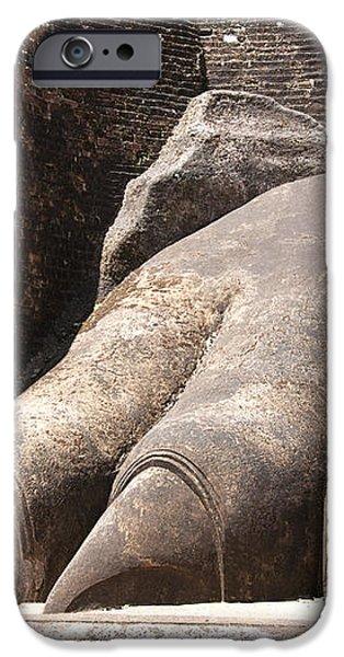 Lion's paw Sigiriya iPhone Case by Jane Rix