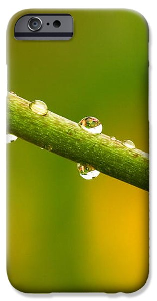 Little Drops of Rain iPhone Case by Amanda Kiplinger