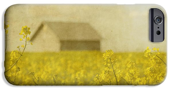 Canola iPhone Cases - Little House on the Prairie iPhone Case by Rebecca Cozart