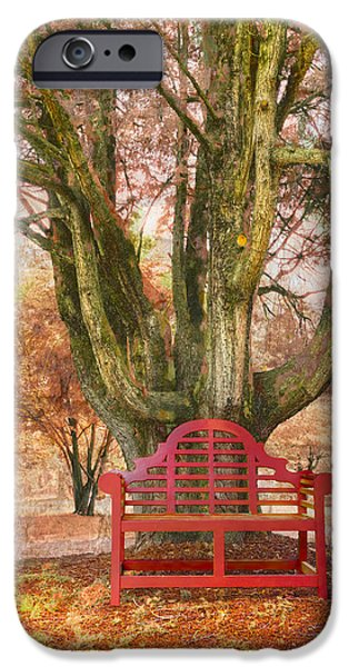 Oak Creek iPhone Cases - Little Red Bench iPhone Case by Debra and Dave Vanderlaan