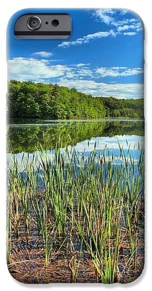 Long Branch Lake Marsh iPhone Case by Adam Jewell
