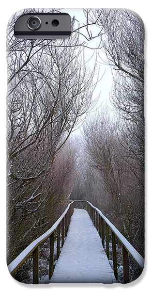 Wolf Picture Art iPhone Cases - Long Bridge iPhone Case by Svetlana Sewell