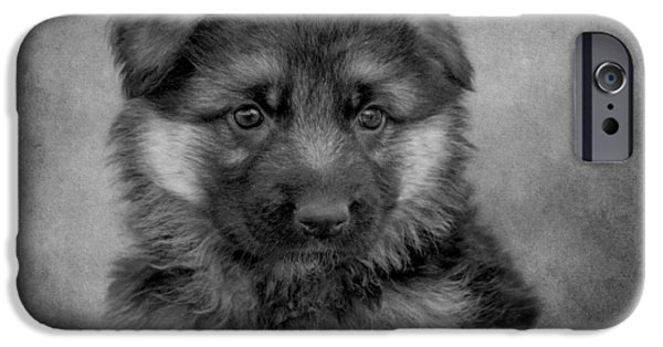 Puppy Digital iPhone Cases - Long Coated Puppy II iPhone Case by Sandy Keeton