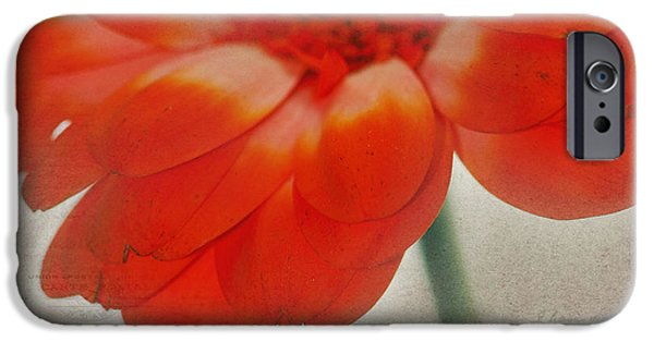 Texture Flower iPhone Cases - Look Inside iPhone Case by Rebecca Cozart