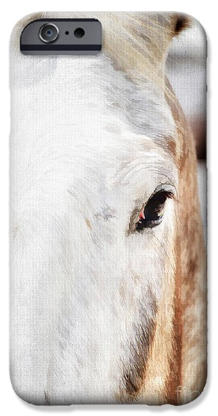 Gray Hair iPhone Cases - Looking into her Soul iPhone Case by Darren Fisher